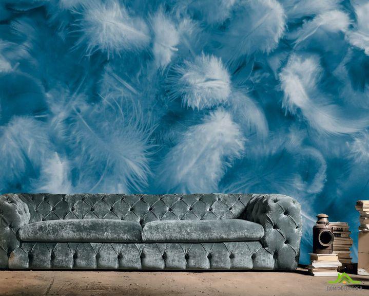 Фотообои Синие пёрышки