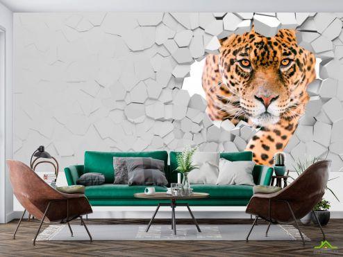 3D объемные Фотообои 3 д тигр
