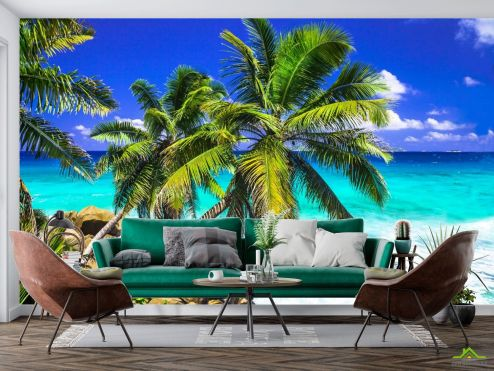 Природа Фотообои две пальмы над голубым морем