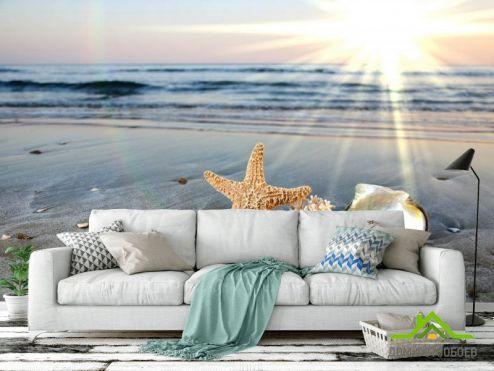 обои Природа Фотообои Ракушки на берегу