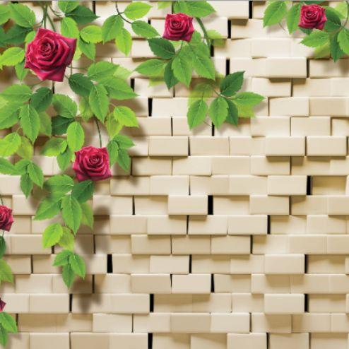 3Д обои Фотообои Розы, стена