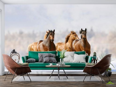 Лошади Фотообои Табун среди волн