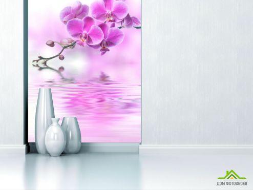 Орхидеи Фотообои розовая орхидея над водой