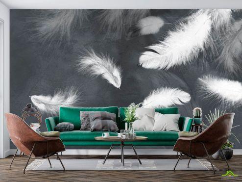 Фотообои перья по выгодной цене Фотообои Белые перья на сером