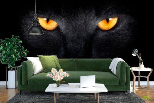 Каталог фотообоев Фотообои Черная кошка