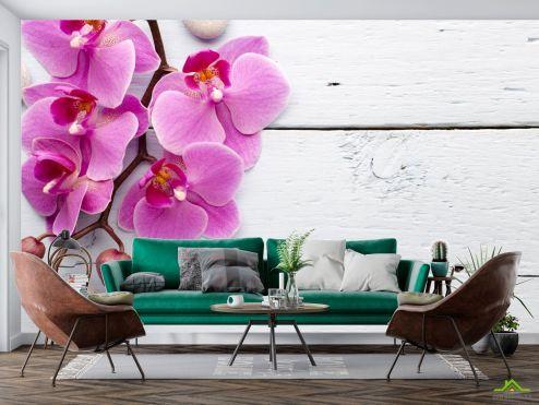 Орхидеи Фотообои сиреневая орхидея на белом деревянном фоне