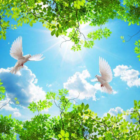 на потолок Фотообои Ветки и голуби для потолка
