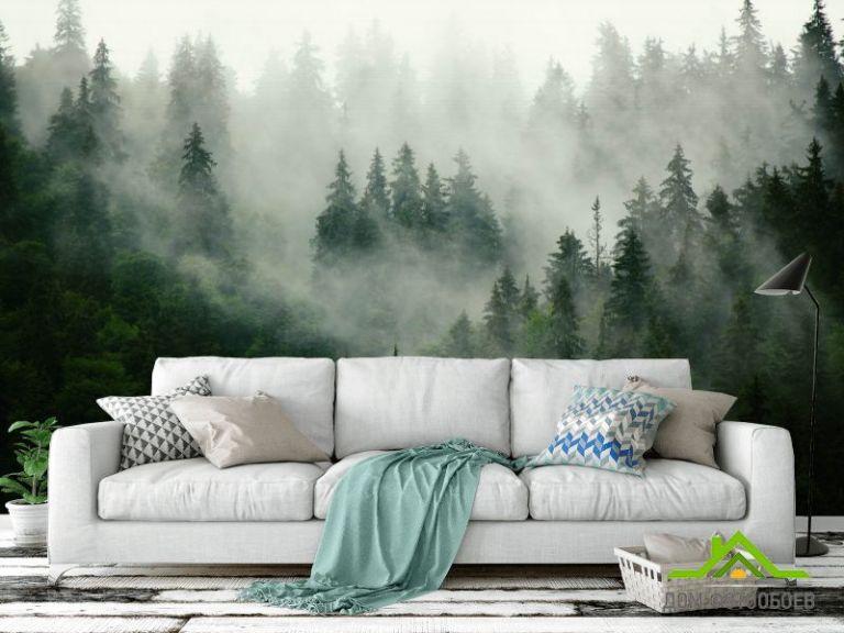 Фотообои Туманный лес