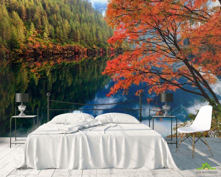 Фотообои Отражение, лес, вода