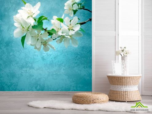 обои Цветы Фотообои Цветы абрикоса мелкие