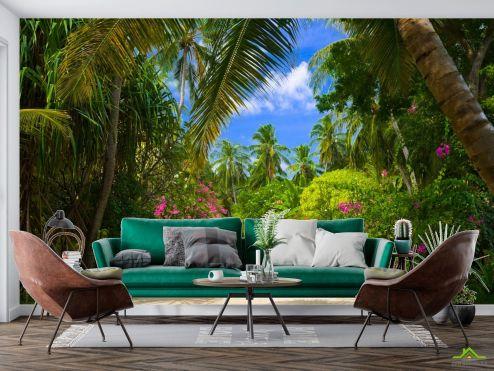 Природа Фотообои пальмовый парк