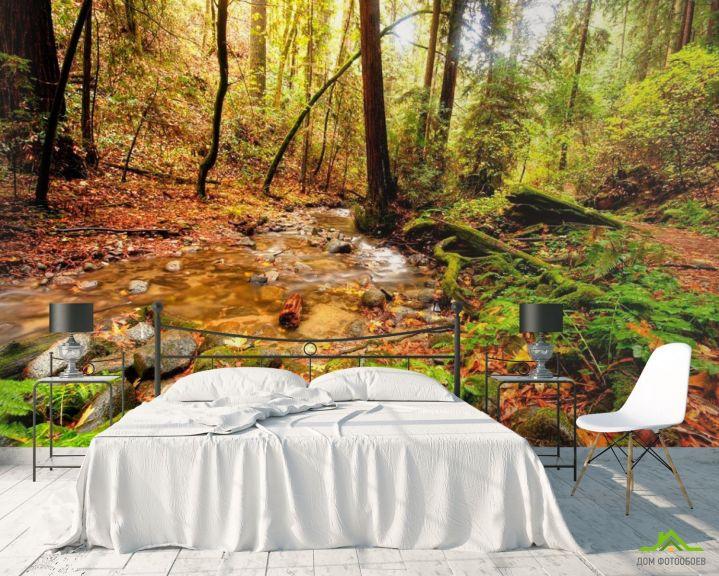 Фотообои Ручей в лесу