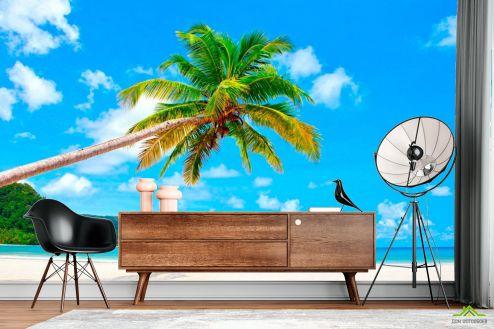 Пляж Фотообои Склонившаяся пальма у моря