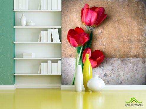 обои Цветы Фотообои Три красных тюльпана