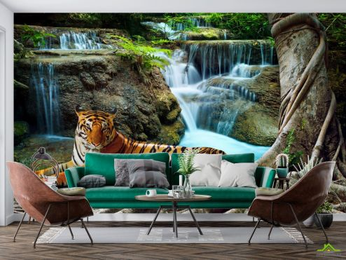Природа Фотообои тигр у водопада купить