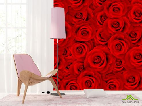 обои Розы Фотообои Букет роз алых