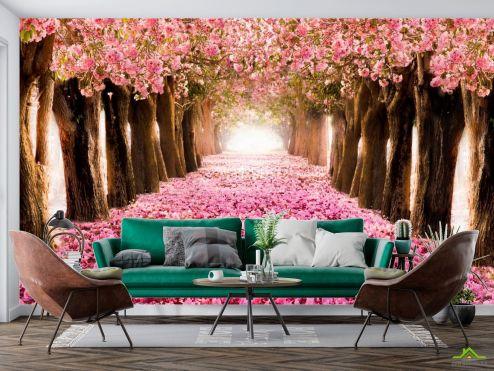 Природа Фотообои аллея с розовыми лепестками