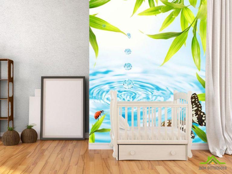 Фотообои капля в воду и бабочка