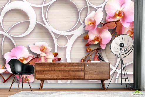 3Д  Фотообои Орхидеи 3д