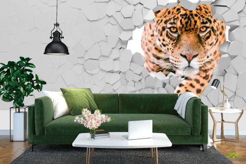 3Д  Фотообои 3 д тигр