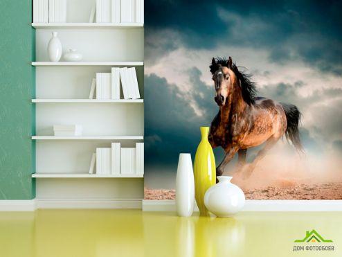 обои Лошади Фотообои Бегущая лошадь