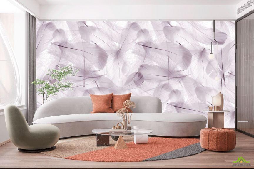 Фотообои Фиолетовые перья