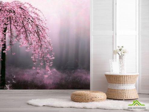 обои цветы 3d Фотообои Сакура