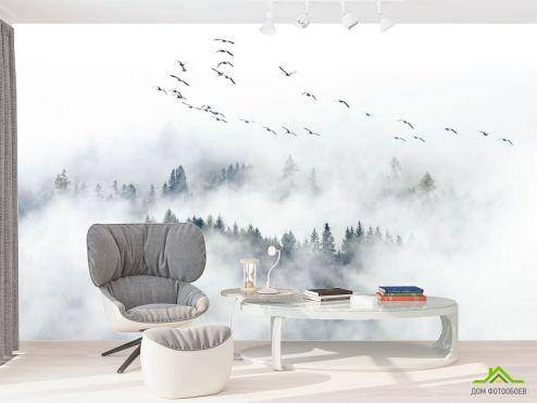 в офис Фотообои Туманный лес с птицами
