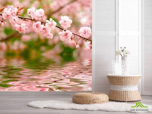 обои Вишня Фотообои Речная вишня цветет