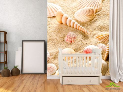 обои Ракушки Фотообои Ракушки в песке