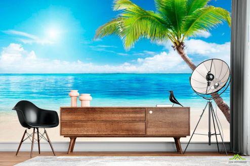 Пляж Фотообои Пляж, пальма, штиль
