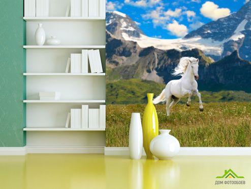 обои Лошади Фотообои Конь в поле