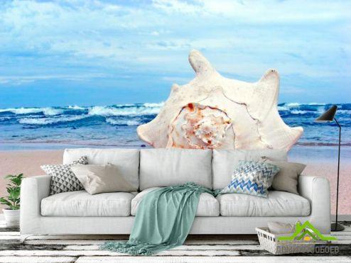 Ракушки Фотообои Ракушки на фоне моря