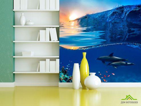 обои Рыбы и море Фотообои Дельфины и море