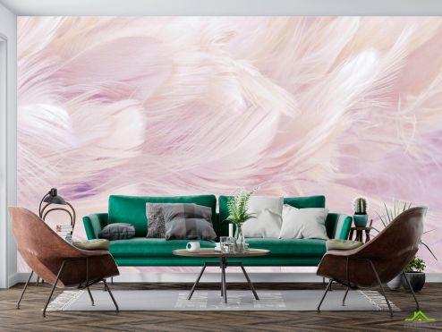 Фотообои перья по выгодной цене Фотообои Розовые перья