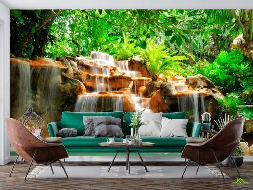 Природа Фотообои Джунгли, вода