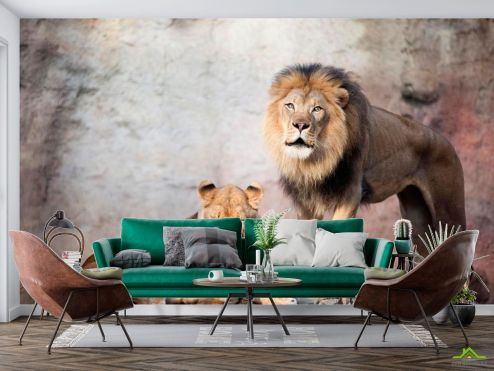 Животные Фотообои Семейство львов
