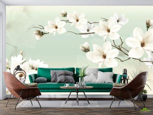 Цветы Фотообои Магнолии на зеленом фоне