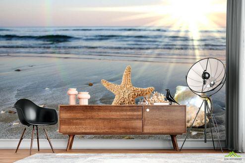 Природа Фотообои Ракушки на берегу купить