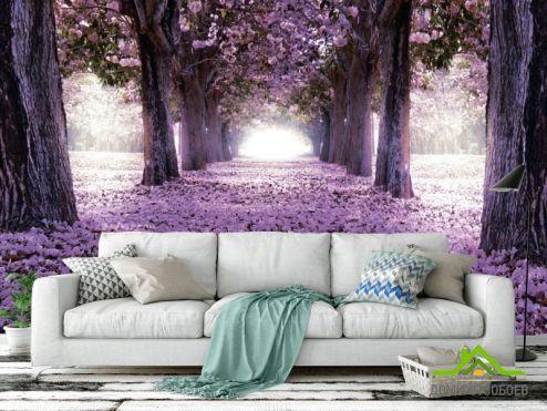 обои Розовые деревья Фотообои Цветущие деревья