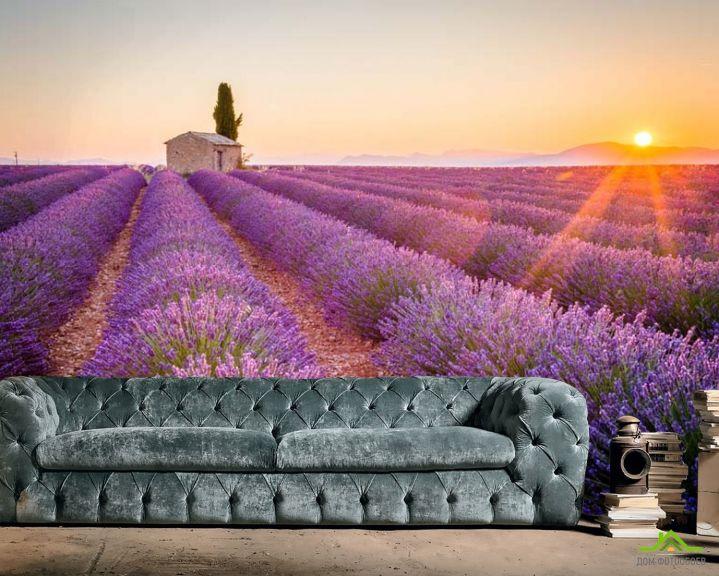 Фотообои Тосканский прованс