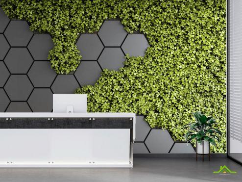 в офис Фотообои Шестиугольники с зеленью