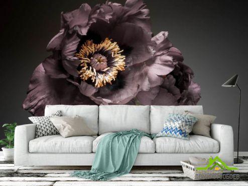 обои Цветы Фотообои Винтажный тёмный цветок