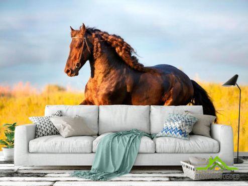 обои Лошади Фотообои Бегущий мустанг