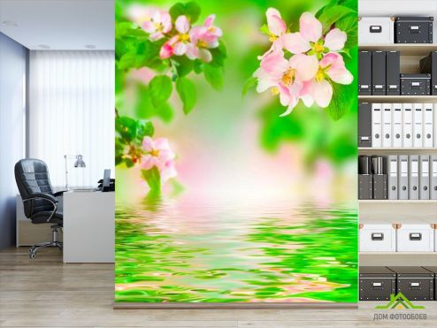 обои Вишня Фотообои Цветущая у реки вишня
