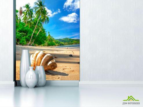 Пляж Фотообои Ракушка макро-съемка
