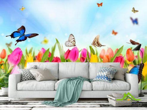 обои Цветы Фотообои Тюльпаны, поле, бабочки
