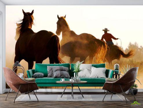 Лошади Фотообои Лошади в поле