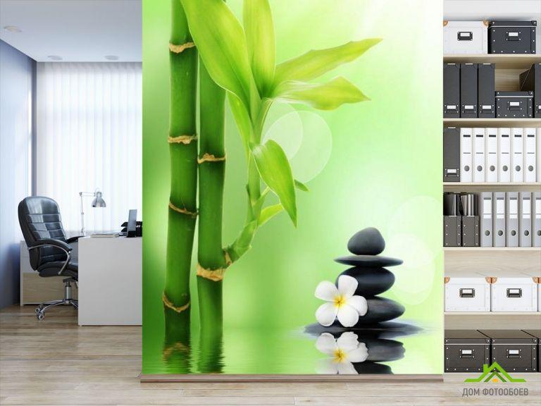 Фотообои бамбук в воде