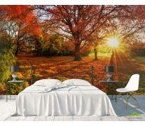 Фотообои красные опавшие листья